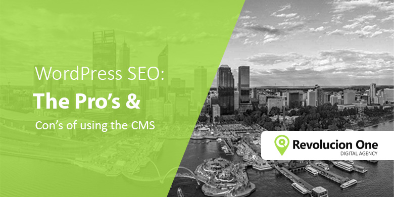 Wordpress SEO Pros and Cons